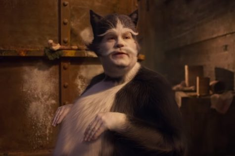 Cats! Photo Credit: thewrap.com