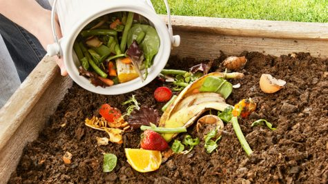 Composting Day!  Photo Credit: yogajournal.com